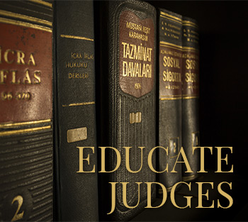 Don't Wait to Educate Judges About Abuse
