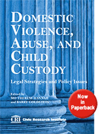 Domestic Violence Abuse and Child Custody